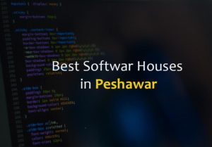 Best software houses in Peshawar